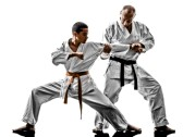 27866680-two-karate-men-sensei-and-teenager-students-teacher-teaching-isolated-on-white-background